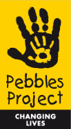PebblesProject.png